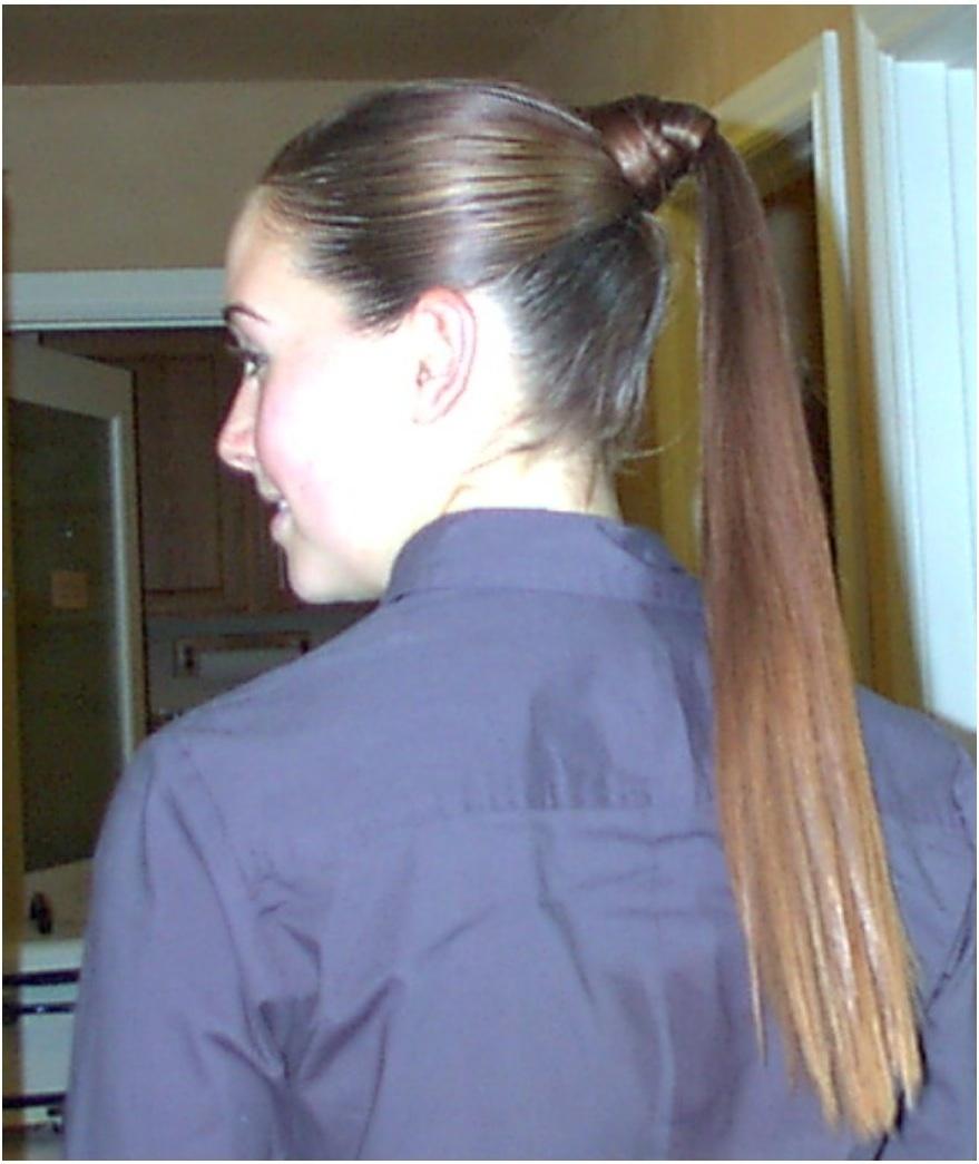 ponytail updo